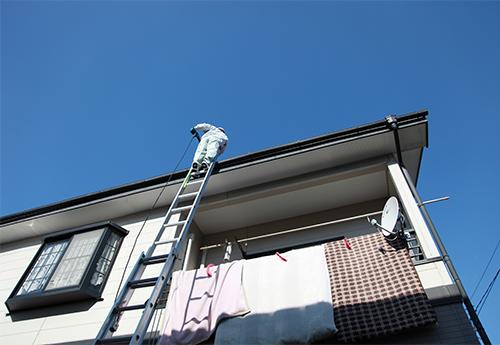 はしごで太陽光パネル洗浄